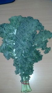 Fresh bunch of Kale from out local markets - yum, get in my tum!