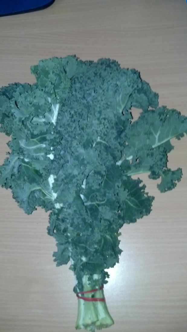Can my horse eat Kale?