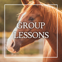 Group Lessons | Equijay
